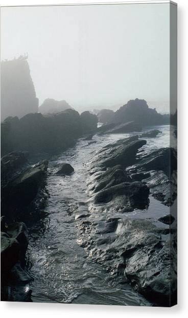 Rock Canvas Print - The Tidepools by Stephanie Haertling