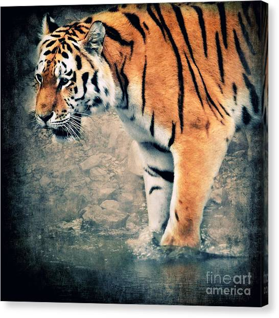 Tigers Canvas Print - The Tiger by Angela Doelling AD DESIGN Photo and PhotoArt