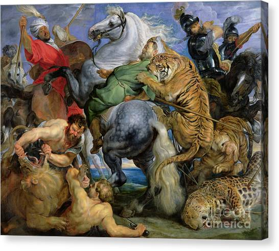 Fighting Canvas Print - The Tiger Hunt by Rubens