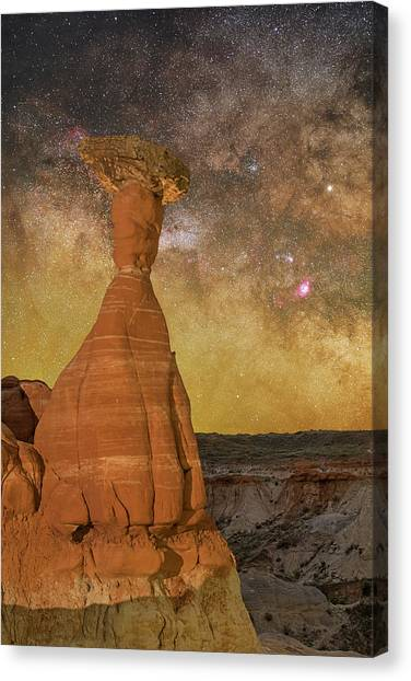 The Toadstool And The Core Canvas Print
