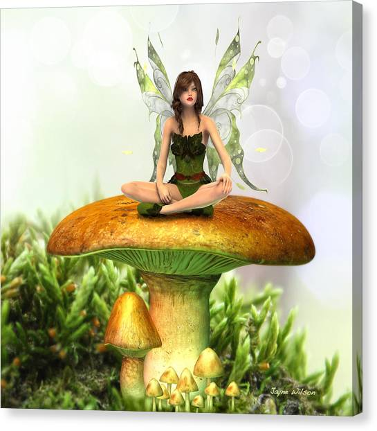 The Toadstool Fairy Canvas Print