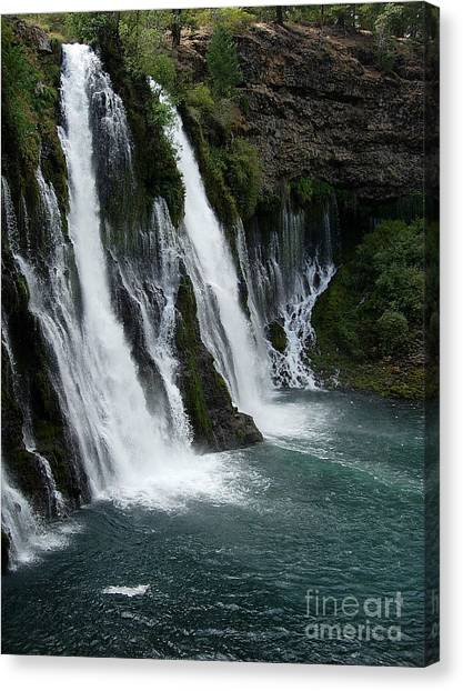 The Tranquility Of Waterfalls Canvas Print by Stephanie  H Johnson