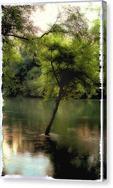 The Tree Island Canvas Print by Ken Gimmi