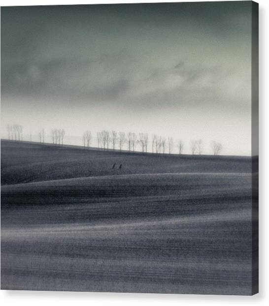 Minimalism Canvas Print - The Trees On The Horizon  #monochrome by Mandy Tabatt