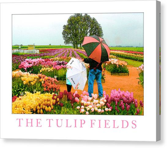 The Tulip Fields Canvas Print by Margaret Hood