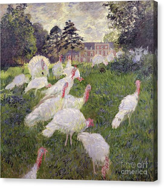 Turkeys Canvas Print - The Turkeys At The Chateau De Rottembourg by Claude Monet
