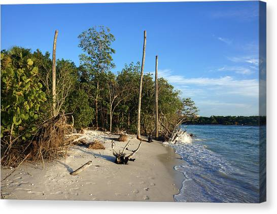The Unspoiled Beauty Of Barefoot Beach In Naples - Landscape Canvas Print
