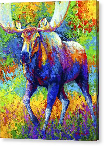 Moose Canvas Print - The Urge To Merge - Bull Moose by Marion Rose