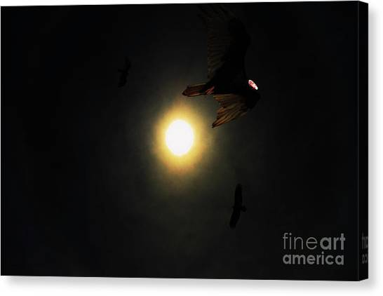 Undertaker Canvas Print - The Vultures Have Gathered In My Dreams by Wingsdomain Art and Photography