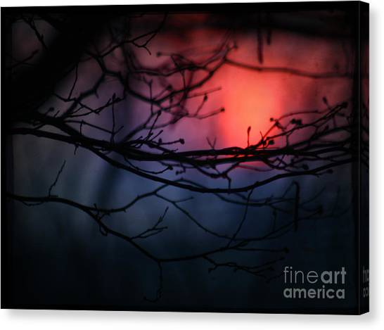 The Warm Light Canvas Print by Angel Ciesniarska