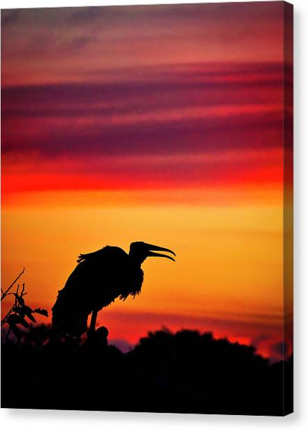 Storks Canvas Print - The Watchman by Mike Lang