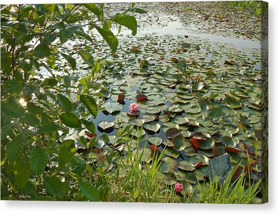 The Water Lily Pond Canvas Print by Molly Dean