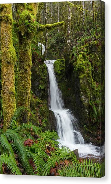 The Water Staircase Canvas Print