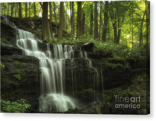 The Waterfall In The Forest Canvas Print