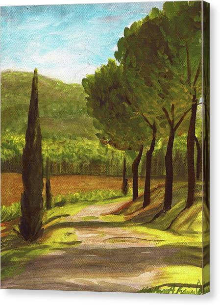 The Way Of The Olive Branch Canvas Print