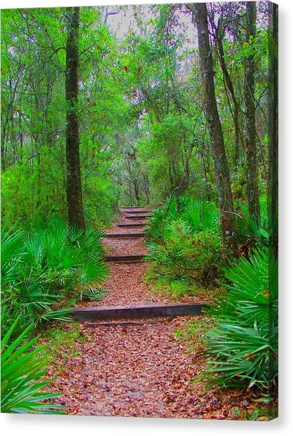 The Way Up Canvas Print by Judy  Waller