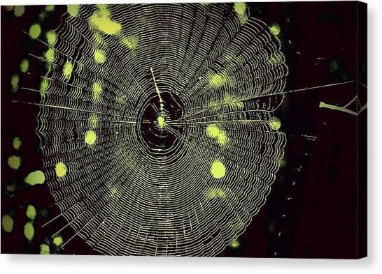 The Web Canvas Print by Jill Tennison