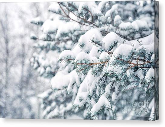 Brunch Canvas Print - The Weight Of Winter by Evelina Kremsdorf