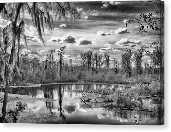 Canvas Print featuring the photograph The Wetlands by Howard Salmon
