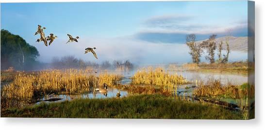 The Wetlands Canvas Print
