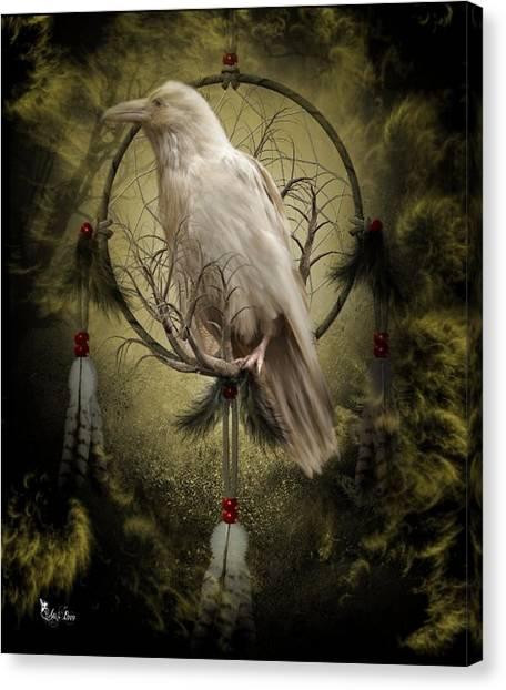 The White Raven Canvas Print