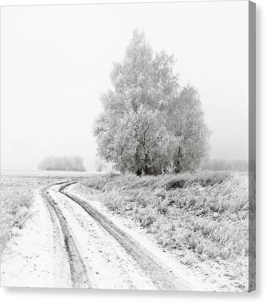 The White Silence. Horytsya, 2014. Canvas Print