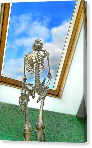 Skeletons Canvas Print - The Window by Robert Lacy