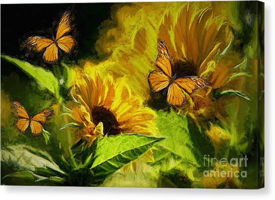 The Wings Of Transformation Canvas Print