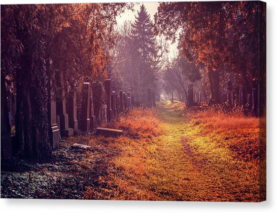 Vienna Canvas Print - The Winter Path  by Carol Japp