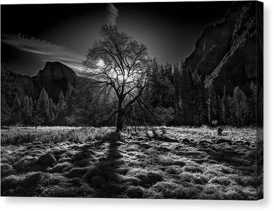 Yosemite Canvas Print - The Winter Spirit by Simon Chenglu