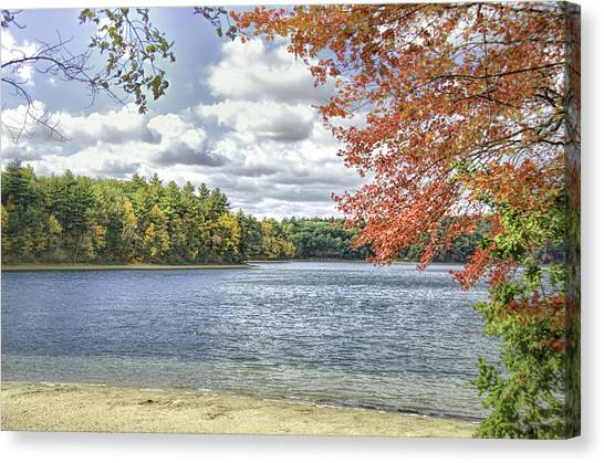 The Wonders Of Walden Canvas Print