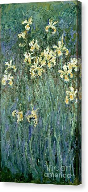 Oil On Canvas Print - The Yellow Irises by Claude Monet