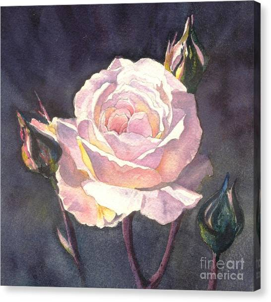 Thea's Rose Canvas Print