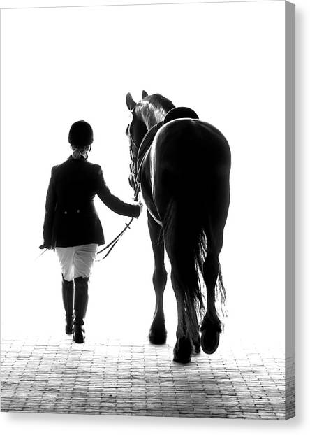 White Horse Canvas Print - Their Future Looks Bright by Ron  McGinnis