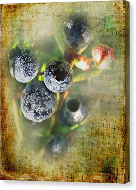Blueberries Canvas Print - Them Old Blueberry Blues by Susan Capuano