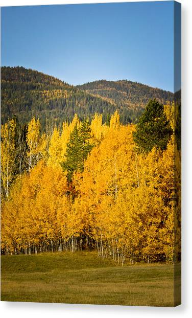 Them Thar Hills Canvas Print