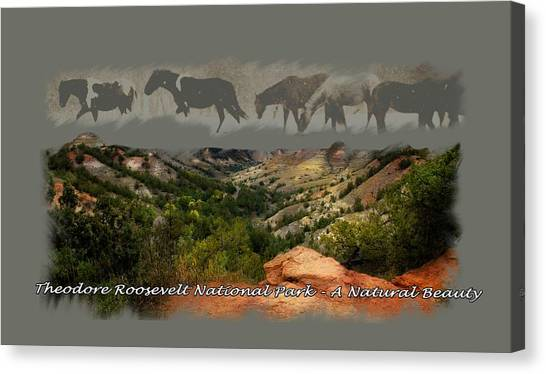 Theodore Roosevelt National Park Canvas Print
