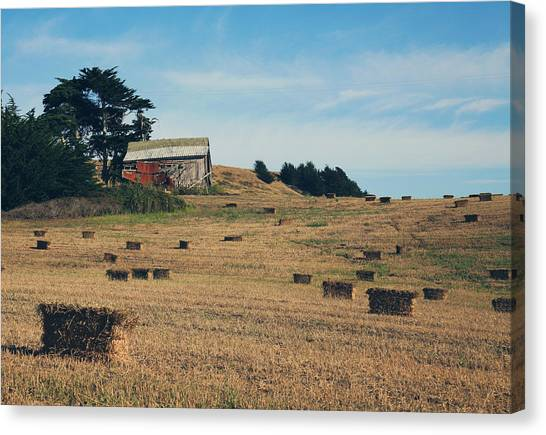 Hay Bales Canvas Print - There All Along by Laurie Search