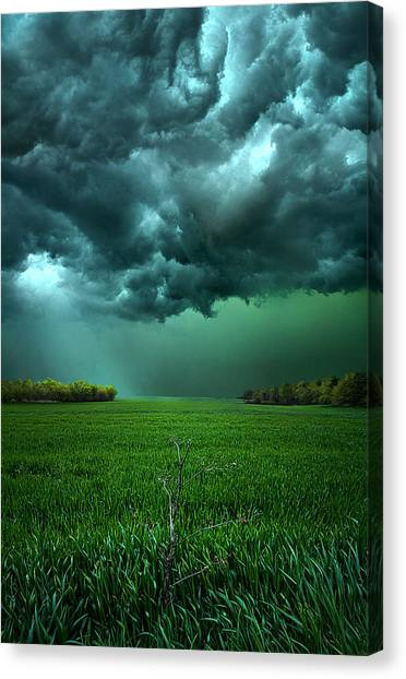 Sunset Horizon Canvas Print - There Came A Wind by Phil Koch