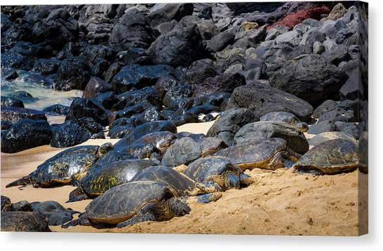 Canvas Print featuring the photograph There Has Got To Be More Room On This Beach  by Jim Thompson