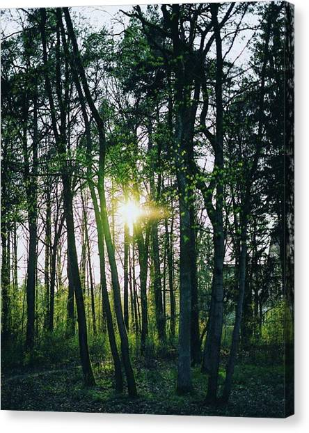 Environment Canvas Print - There Is Always An Adventure Waiting In by Patrik Duda
