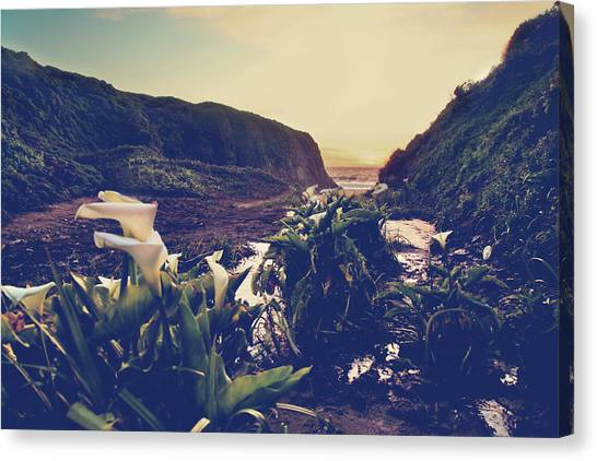 Ocean Cliffs Canvas Print - There Is Harmony by Laurie Search