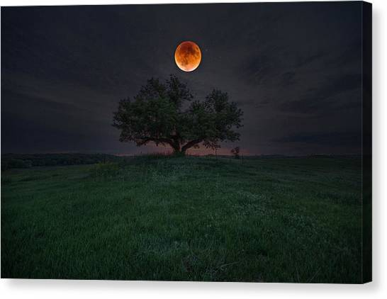 Blending Canvas Print - There Will Be Blood by Aaron J Groen