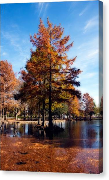 Oklahoma State University Canvas Print - Theta Pond by Lana Trussell