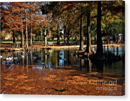 Oklahoma State University Canvas Print - Theta Waterfowl by Lana Trussell