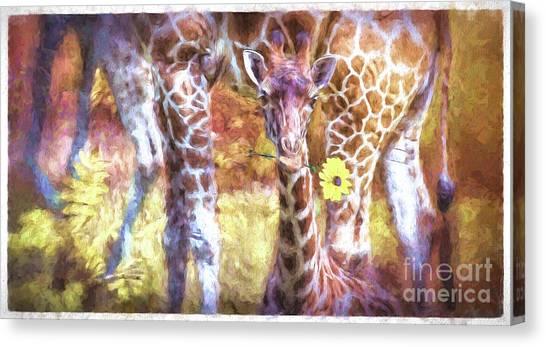 The Whimsical Giraffe  Canvas Print