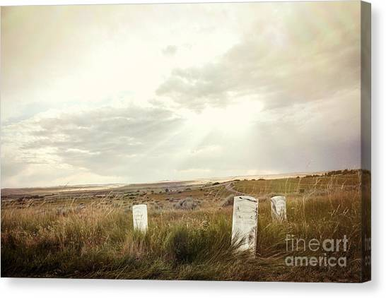 Canvas Print featuring the photograph They Stand Alone by Sandy Adams
