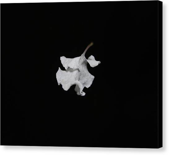 Thin Air Canvas Print