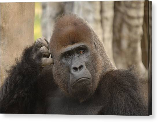 Think About It Canvas Print by Keith Lovejoy