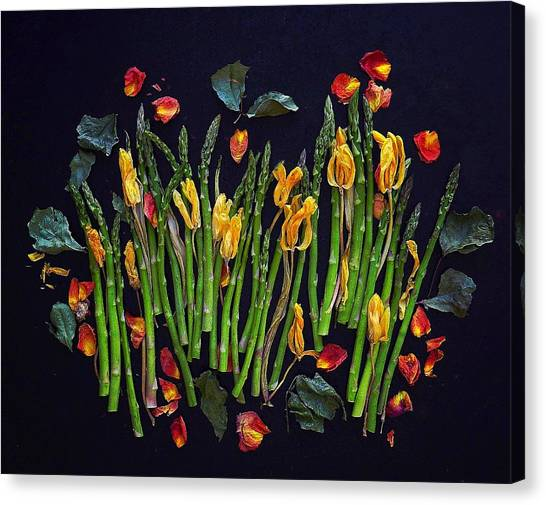 Think Spring Asparagus Canvas Print
